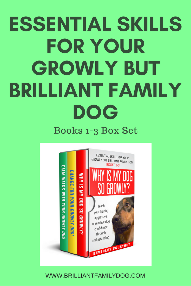 Reactive dog, aggressive dog, fearful dog | Essential Skills for your Growly but Brilliant Family Dog by Beverley Courtney | FREE EMAIL COURSE | #aggressivedog, #reactivedog, #dogtraining, #growlydog | www.brilliantfamilydog.com