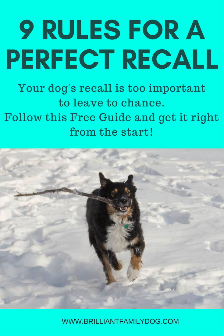 9 Rules for a Perfect Recall