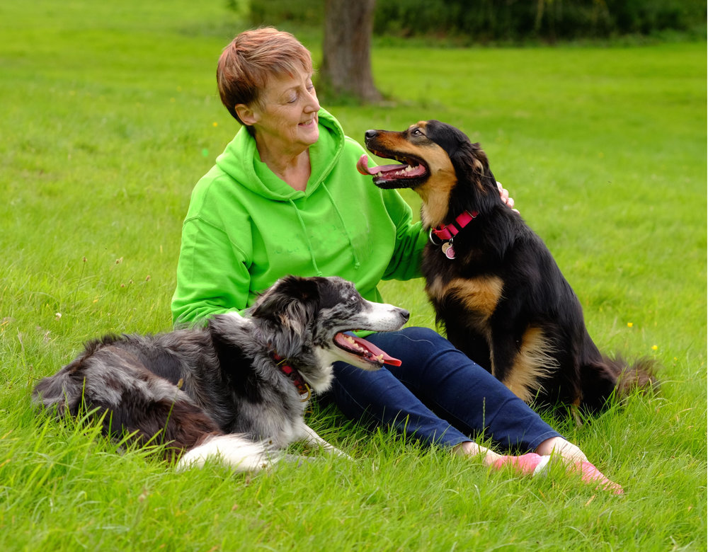 Beverley Courtney and friends | FREE EMAIL COURSE | www.brilliantfamilydog.com
