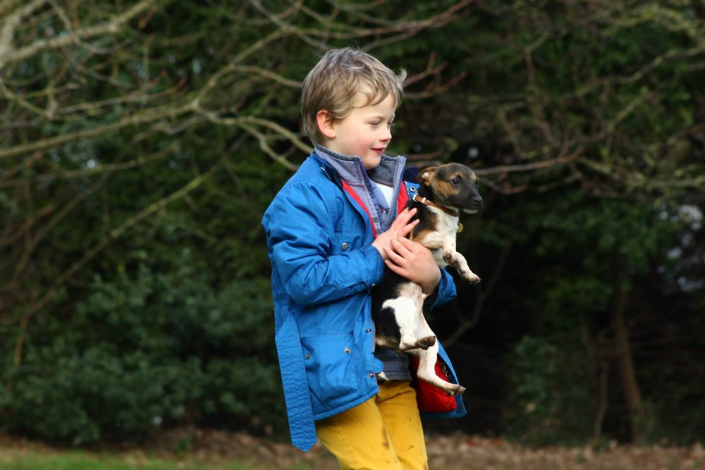 A young boy carrying jis terrier pup | www.brilliantfamilydog.com/blog/can-i-really-train-my-dog-by-giving-him-a-choice