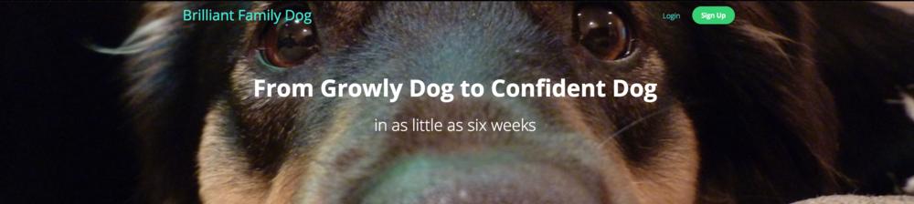 brilliantfamilydog.teachable.com/courses/growly-aggressive-reactive-dog