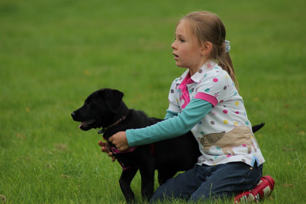 Puppies and children are a mix made in heaven. But things could go badly wrong! Check out the ideas and resources in this post | FREE EMAIL COURSE | Dog training, new puppy, puppy training, dogs and children, dog biting child | #newpuppy, #dogtraining, #newrescuedog, #puppytraining, #dogbehavior, #dogbiteschild | www.brilliantfamilydog.com