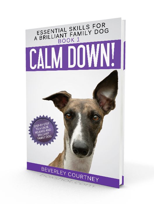 Calm Down! An essential dog training skill. Essential Skills for a Brilliant Family Dog Book 1 by Beverley Courtney | FREE BOOK | #newpuppy, #dogtraining, #newrescuedog, #doghealth, #dogbehavior, #dogimpulsecontrol | www.brilliantfamilydog.com