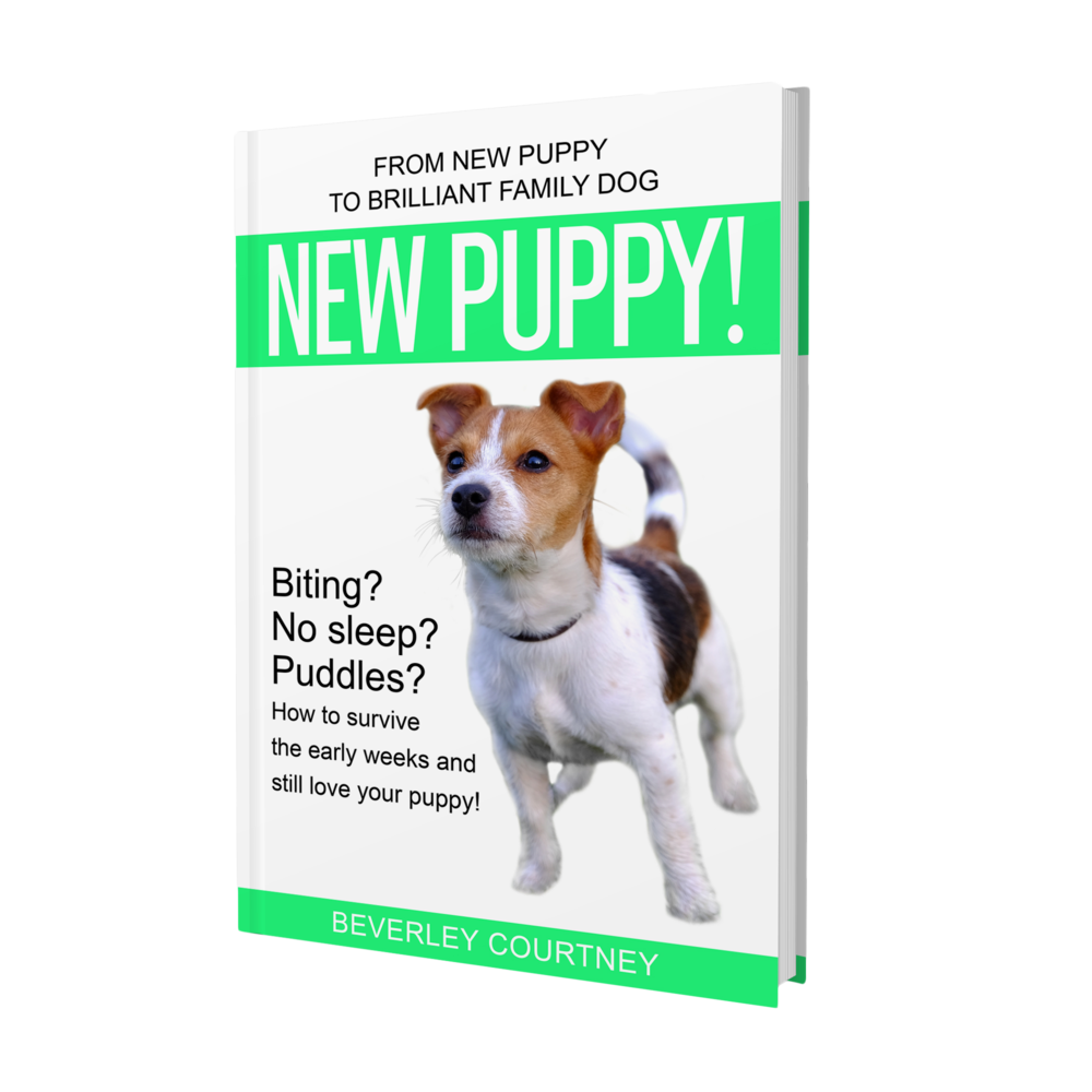 "PUPPY BITING? NO SLEEP? PUDDLES?  ""New Puppy!"" the latest book in the Brilliant Family Dog series of dog-friendly training books will save your sanity and have you loving your puppy again"