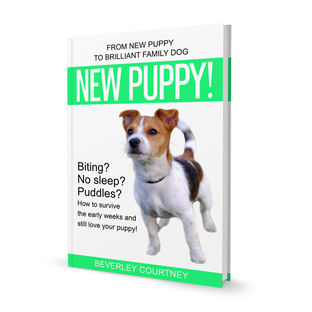 "PUPPY BITING? NO SLEEP? PUDDLES?  ""New Puppy!"" the latest book in the Brilliant Family Dog series of dog-friendly training books will save your sanity and have you loving your puppy again 
