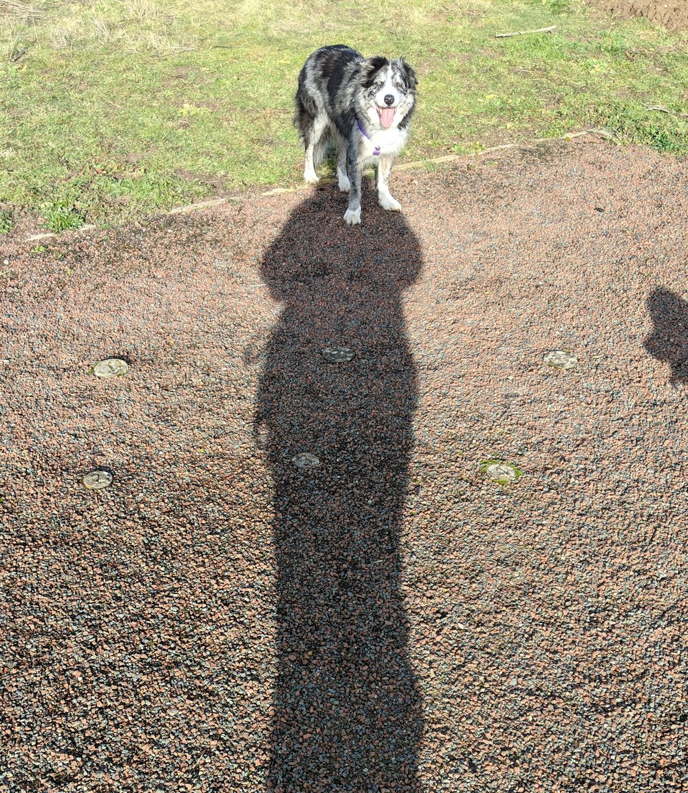 Watch out for funny shadows in your photos and video!