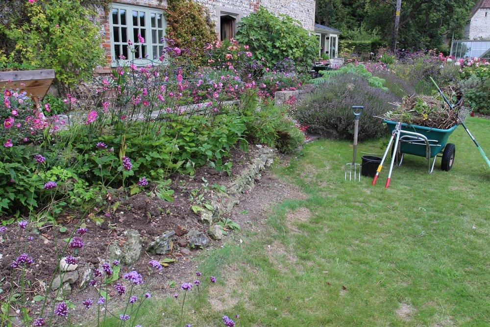 Lavender beds renewal.jpg