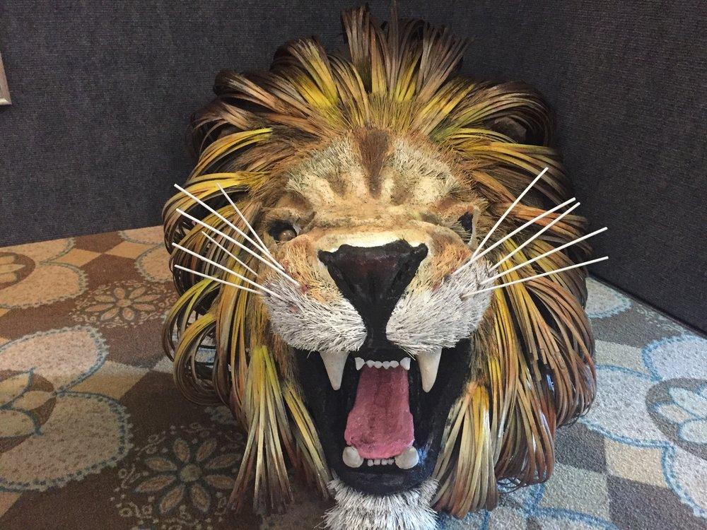 Art Show-Lion.jpeg