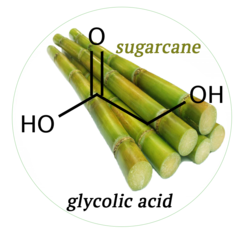 Sugarcane Island Sugarcane Juice and Pure Cane Syrup — Why sugarcane is  great for your skin