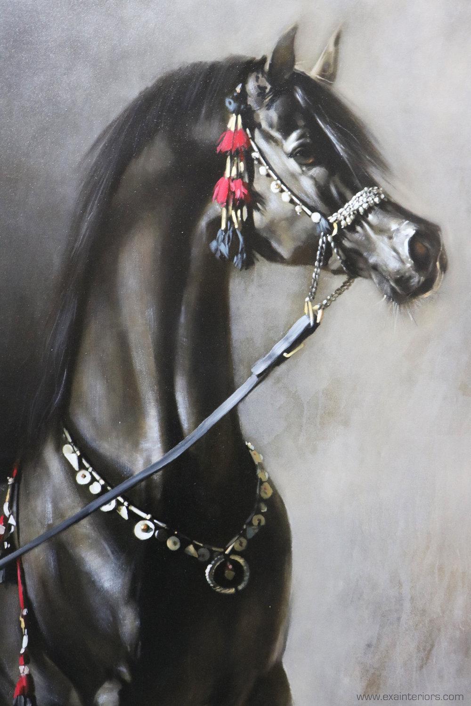 Black Horse Close Up LR copy.jpg