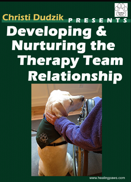 Developing and Nurturing the Therapy Team Relationship DVD cover