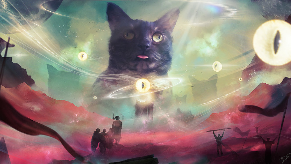 1147-our-feline-overlords-eddy-shinjuku