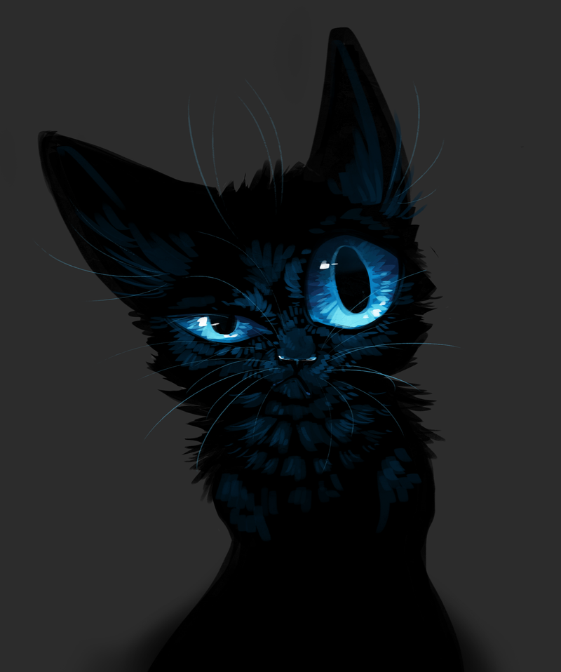 meow__by_kipinwolf-d68a4rm.png