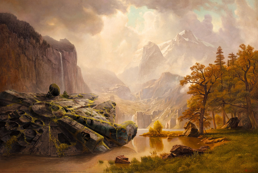 1366-falcon-at-the-mountains-oliver-wetter