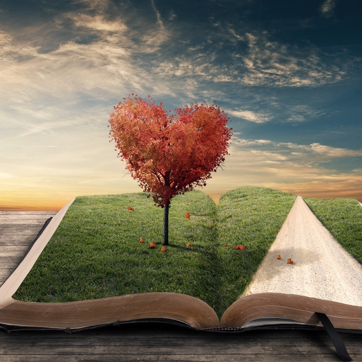 book_of_love_by_kevron2001-d5s1nfx.jpg