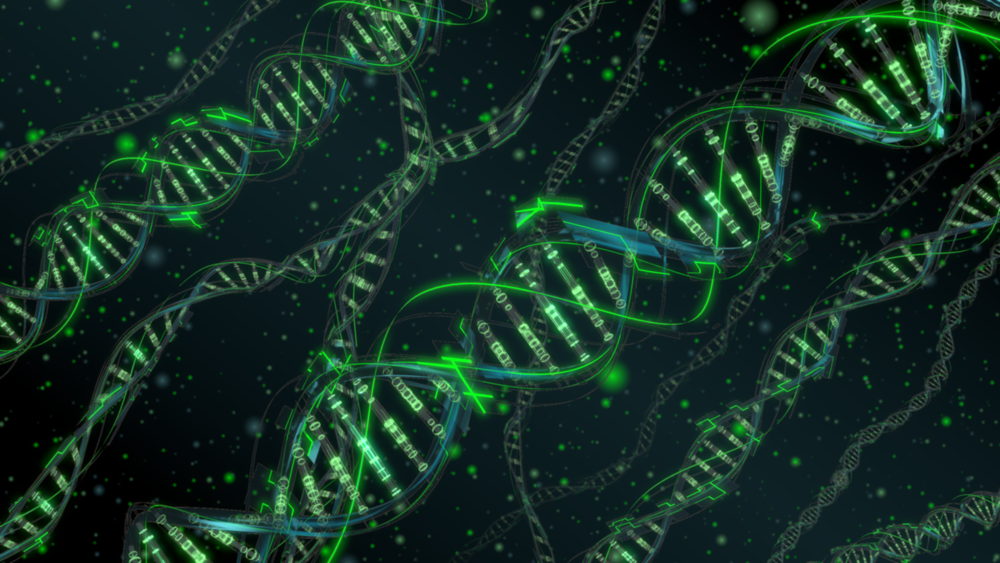 dna_by_l0kust-d5tmvqi.png