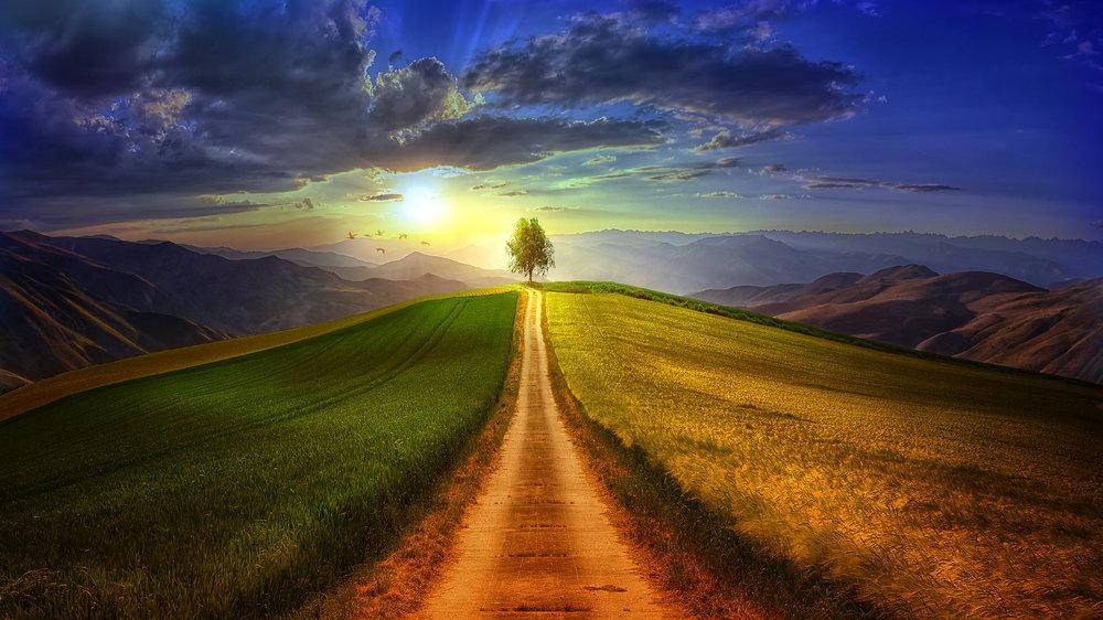 1676-path-to-the-unknown-elena-dudina