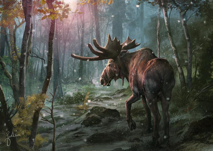 moose_in_sunset_by_joachimb-d3hphs1.jpg