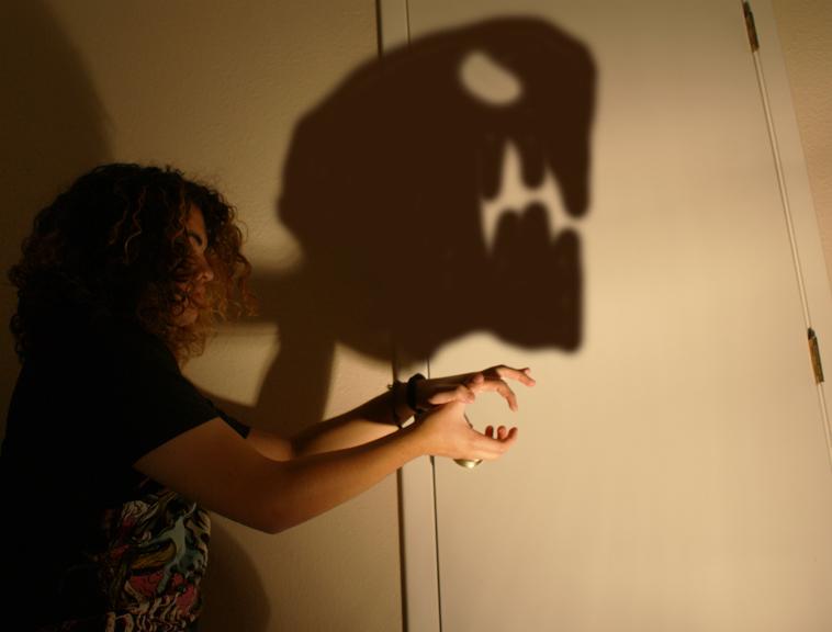 shadowpuppet.jpg