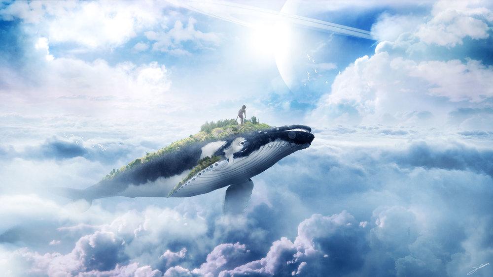 1936-sky-whale-jason-kim