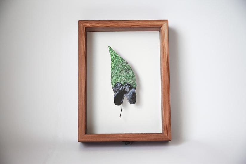 leaf_box_2.jpg