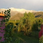 Morning from my bedroom balcony