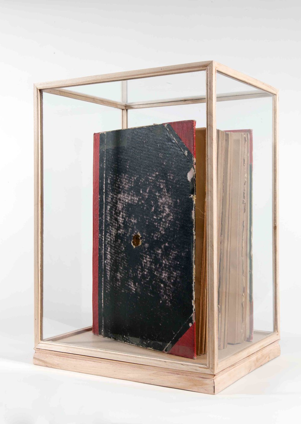 Jayne Dyer,  Suppose... , 2013, book, 19 x 26 x 6cm