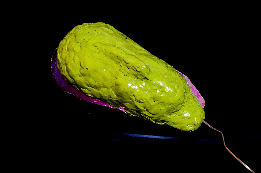 Elisabeth Weissensteiner,  Green Brain-Shell , 2012, polyester resin, fibreglass, pigments, LED light, 55 x 15 x 15cm
