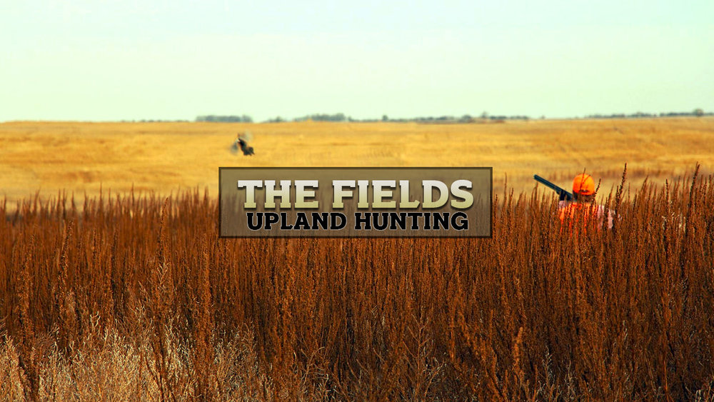 FieldsUpland.jpg
