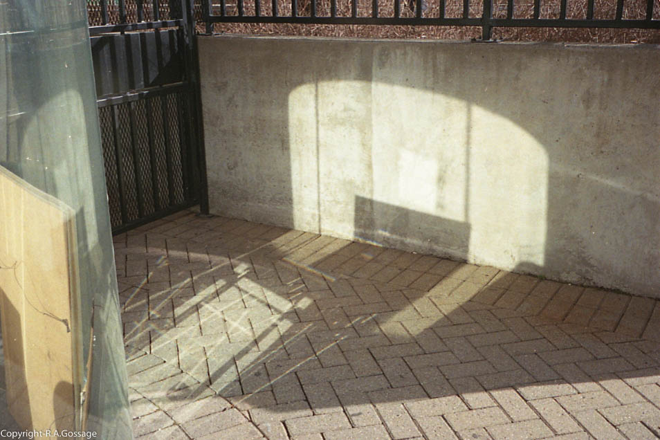 reflexions_2 (1 of 1).jpg