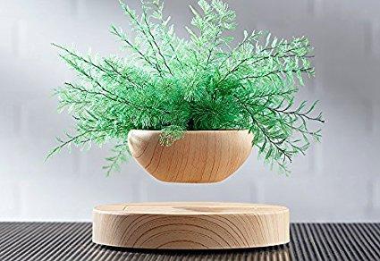 Levitating Plant.jpg