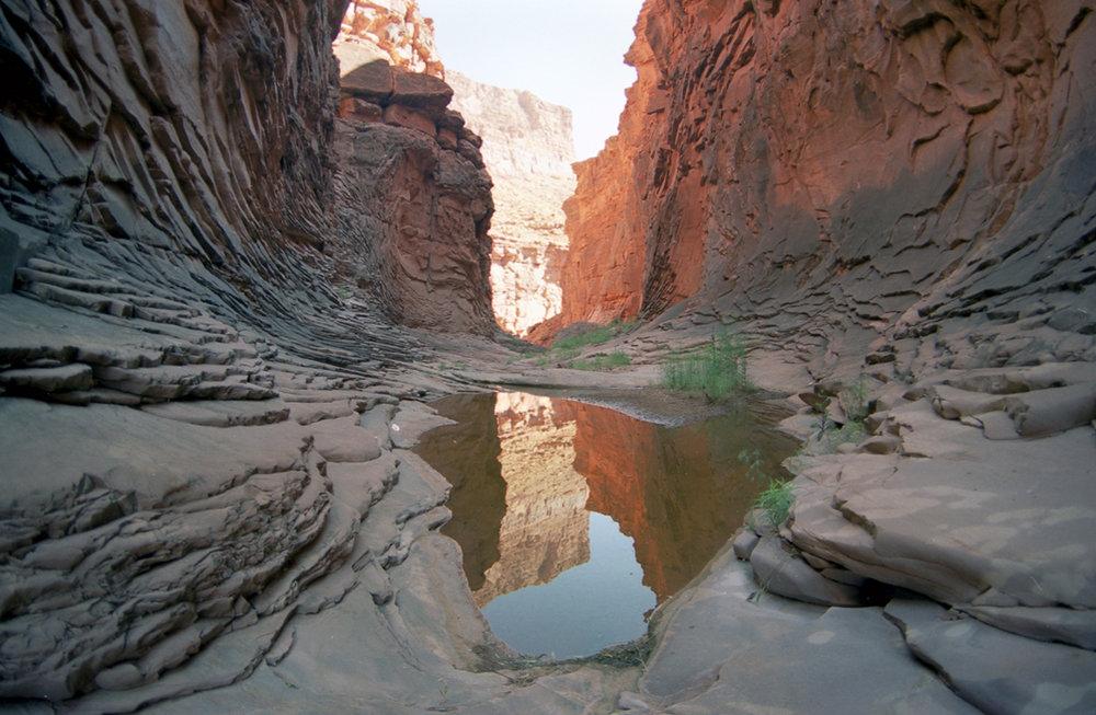 canyonweb.jpg