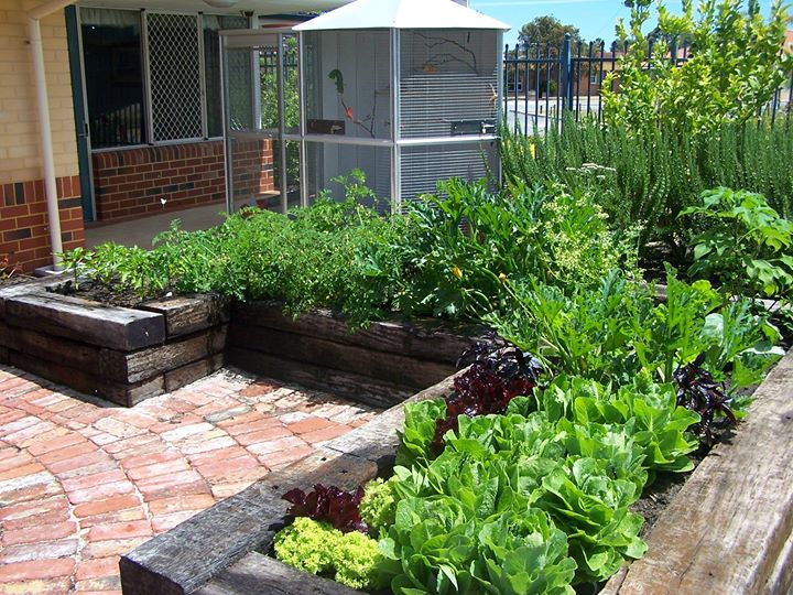 The water comes from bottom up this creates an optimum irrigation to produce healthy vegetables. Join us to learn how to design and practically build one. & Courses \u2014 Food in gardens