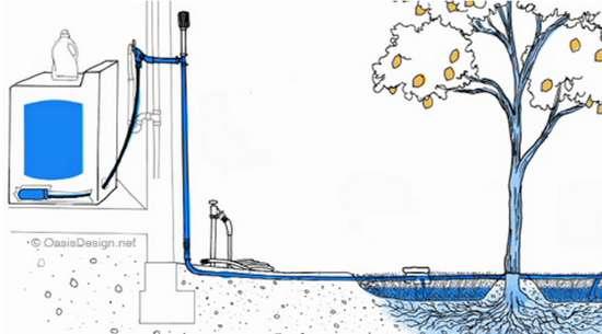 greywater-system.jpg