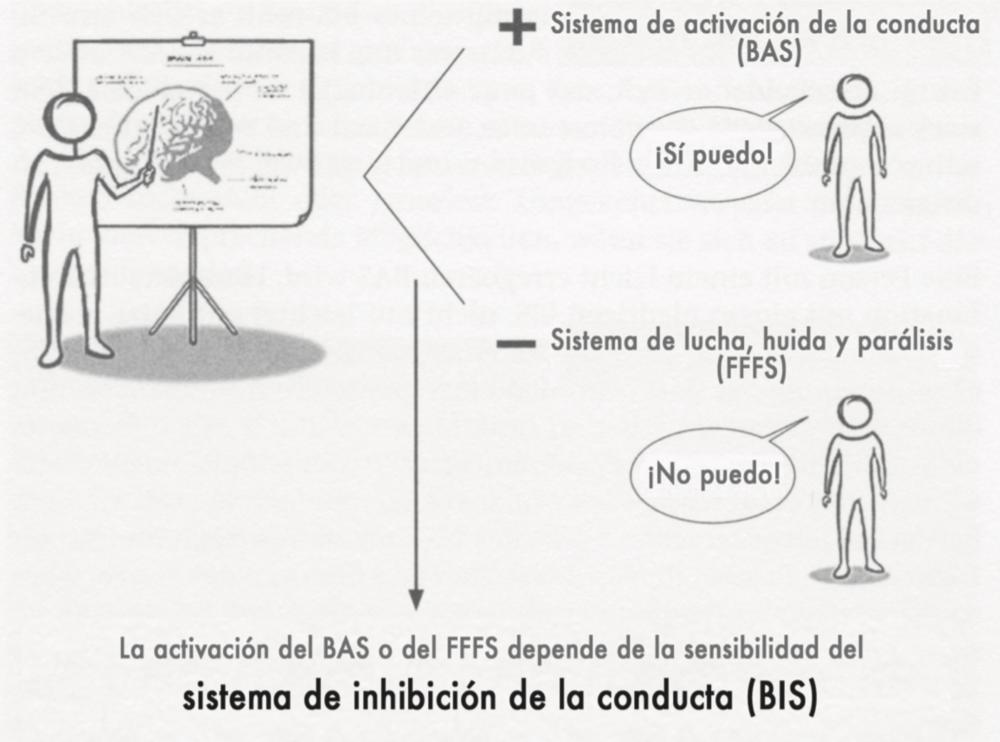 Figura:  Interacción entre el BAS, el FFFS y el BIS. La activación del BAS o del FFFS depende de la sensibilidad del BIS. Fuente: One Steap Ahead. Notebeart Consulting (dibujo de Lars Richter).