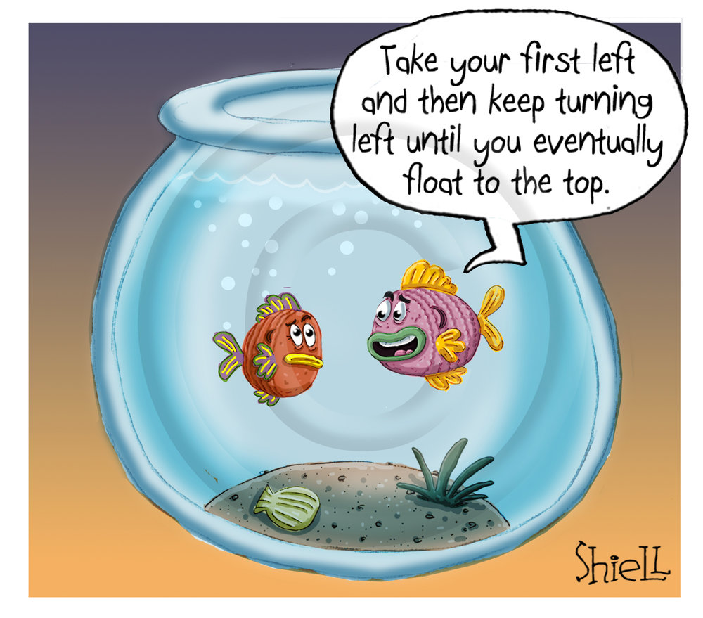 Fish Directions.