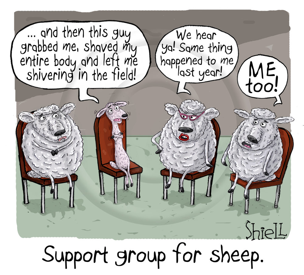 Support Group for Sheep.