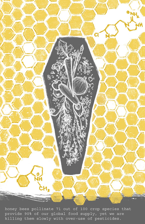 Environmental Crises: The Bees