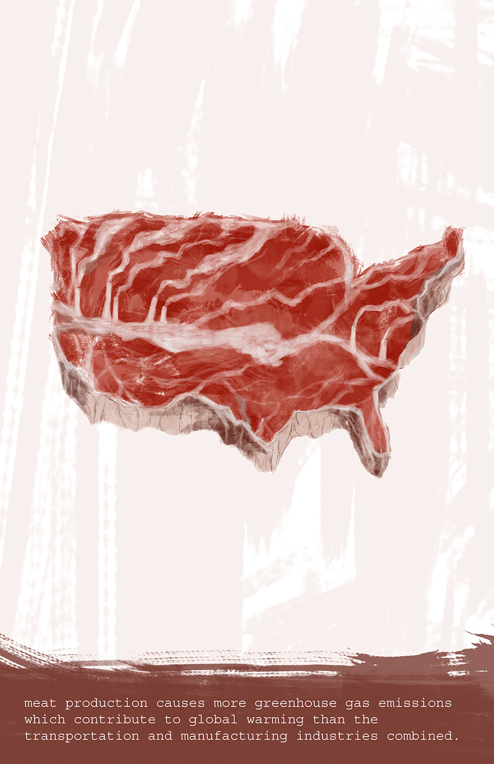 Environmental Crises: Meat Industry