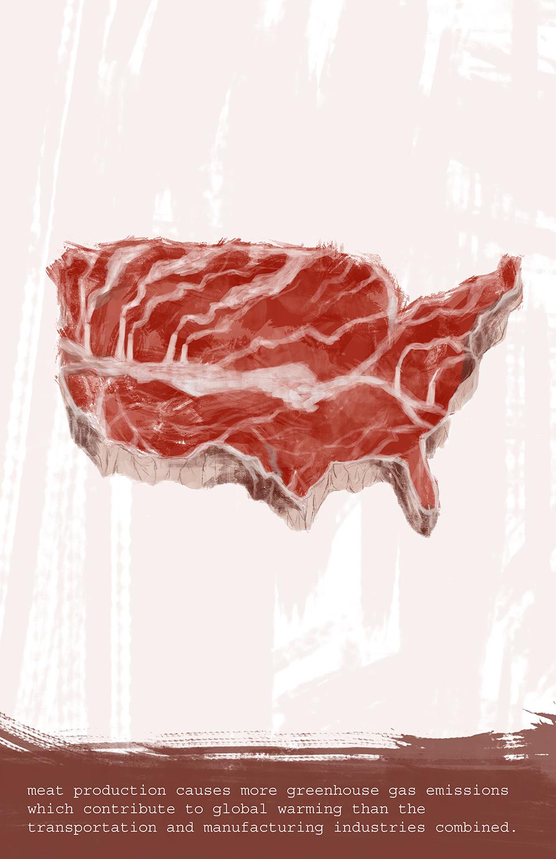 Environmental Crises: Meat Industry