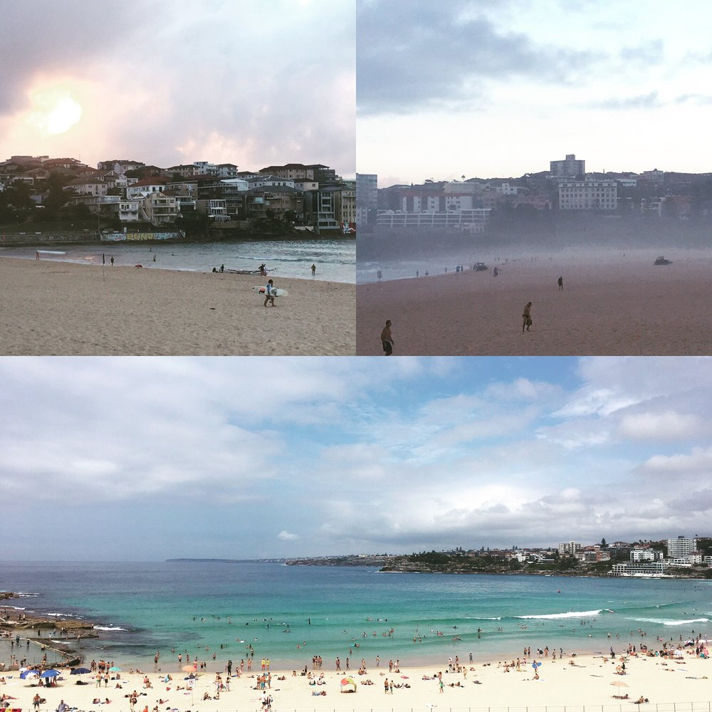 Shades of Bondi