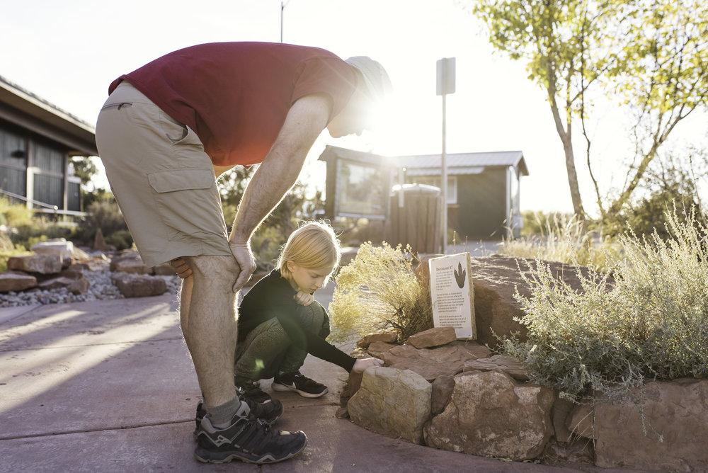 Examining a dinosaur track in a rock.