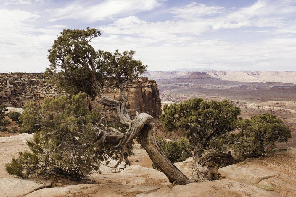 Moab, UT-931.jpg