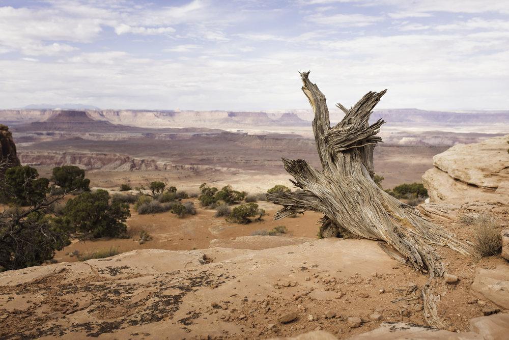 Moab, UT-940.jpg