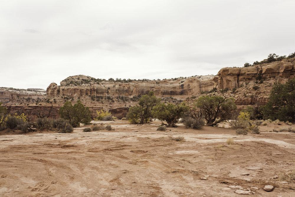 Moab, UT-1052.jpg