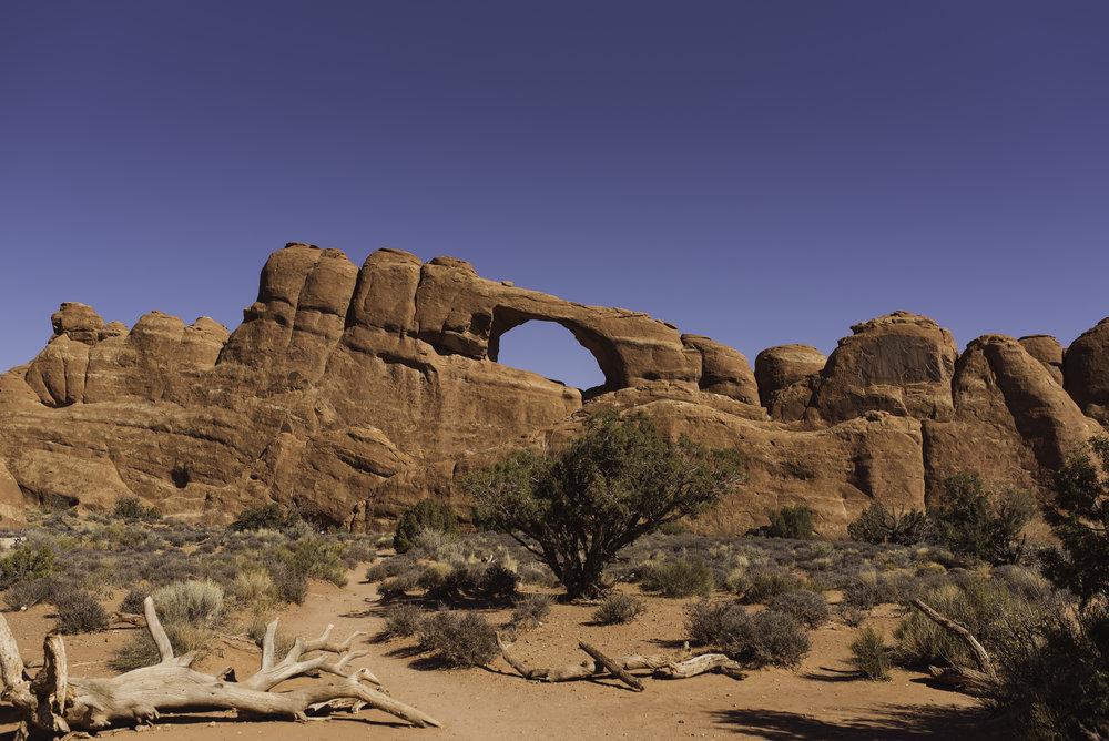 Moab, UT-1443.jpg