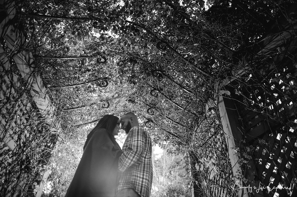 Lisa_Engagement-77.jpg