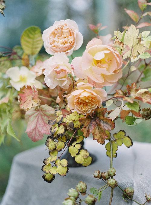 ceres-flowers-speckled-leaves.jpg