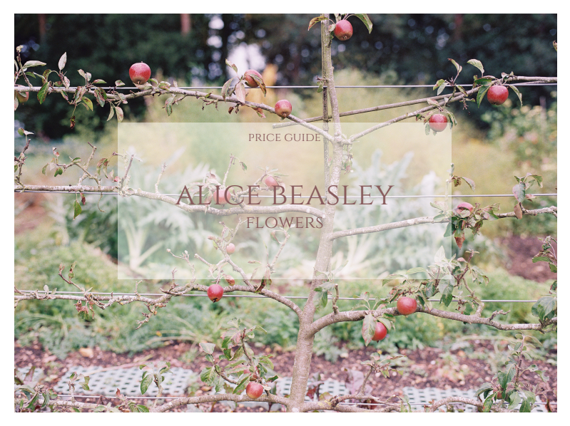 alicebeasleyflowerspriceguide