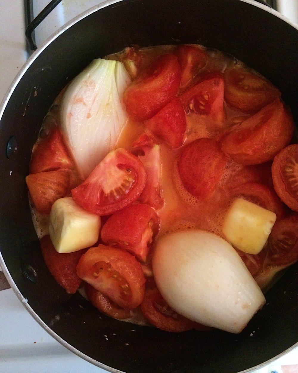 Marcella Hazan Tomato Sauce 1